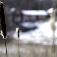 Toimi nyt – vaihda Katsosta Suomi.fi-valtuutukseen