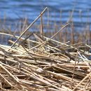 Piapojauhojen tuottaja ja kierrätystekstiilituotteiden valmistaja saavat yritystukea