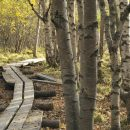 Tarvitseeko alueesi luontokohde uutta potkua?